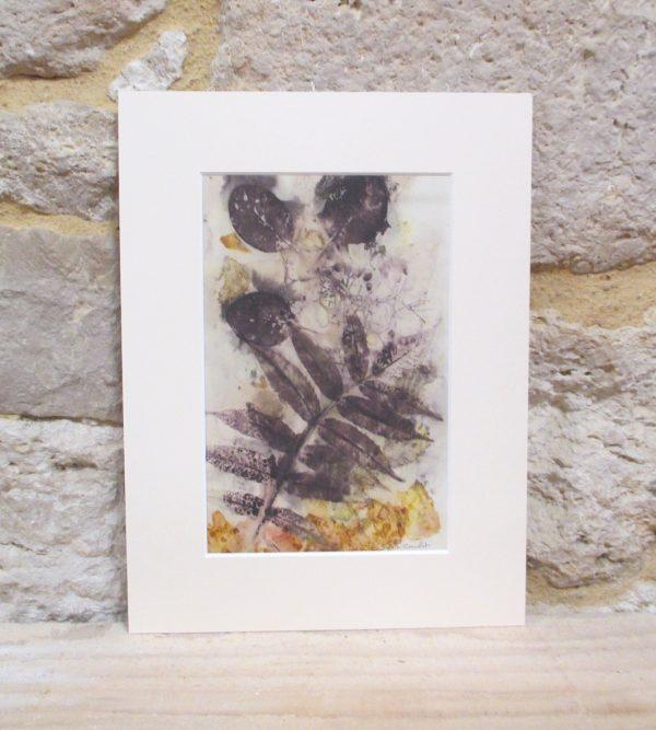 Impressions botaniques, ecoprint, papier